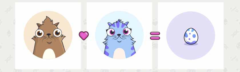 crypto-cat