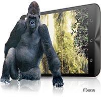 gorilla-icon