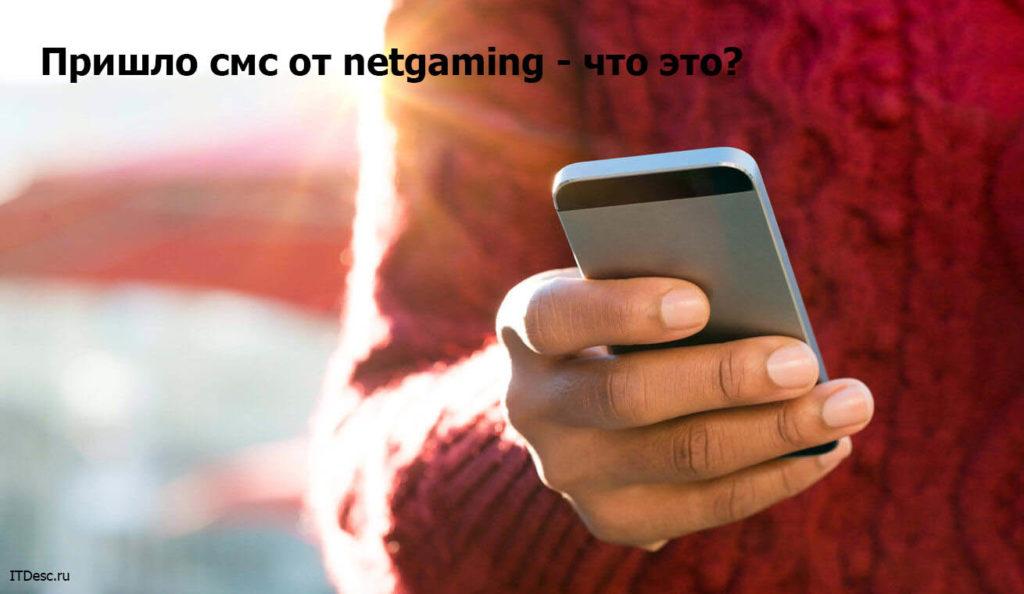 Пришло смс от netgaming - что это?
